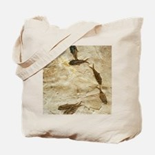 Fish fossils Tote Bag