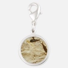 Fish fossils Silver Round Charm