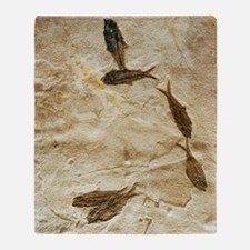 Fish fossils Throw Blanket