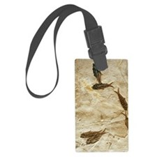 Fish fossils Luggage Tag