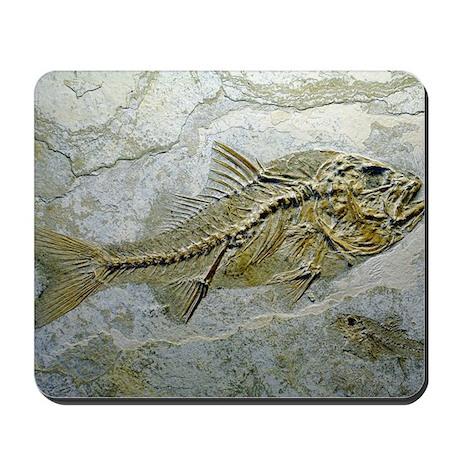 Fish fossil Mousepad