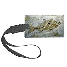 Fish fossil Luggage Tag