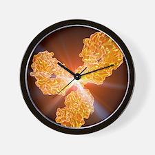 Immunoglobulin G antibody molecule Wall Clock