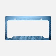 Ice sheet surface License Plate Holder