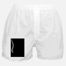 Human spine, artwork Boxer Shorts