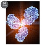 Immunology Puzzles