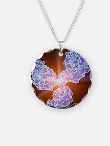 Immunoglobulin G antibody mo Necklace