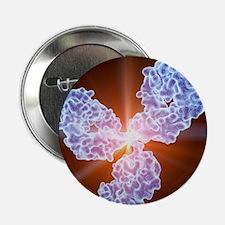 "Immunoglobulin G antibody molecule 2.25"" Button"