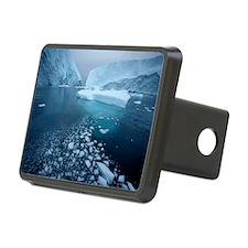 Iceberg Hitch Cover