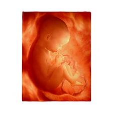 Human foetus in the womb, artwork Twin Duvet