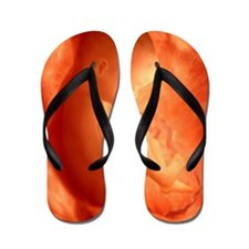 Human foetus in the womb, artwork Flip Flops