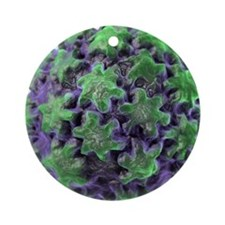 Human papilloma virus particle, art Round Ornament