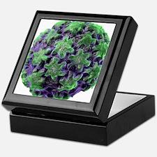 Human papilloma virus particle, artwo Keepsake Box