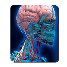 Human head anatomy, artwork Mousepad