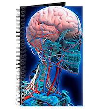 Human head anatomy, artwork Journal
