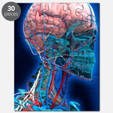 Human head anatomy, artwork Puzzle