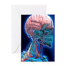 Human head anatomy, artwork Greeting Card