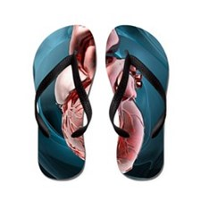 Human heart, artwork Flip Flops