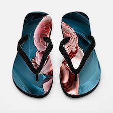 Human heart, artwork Flip Flops