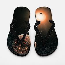 Extrasolar planets, artwork Flip Flops