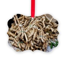 Horseradish roots Ornament