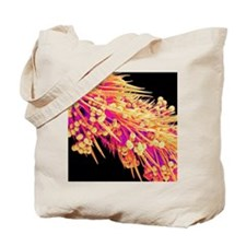 Honeybee leg, SEM Tote Bag