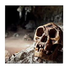 Homo floresiensis skull Tile Coaster