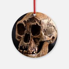 Homo floresiensis skull Round Ornament