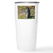 Hoary marmots Travel Mug