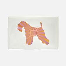 Lakeland Rays Rectangle Magnet (10 pack)
