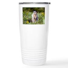 Hoary marmots Travel Coffee Mug
