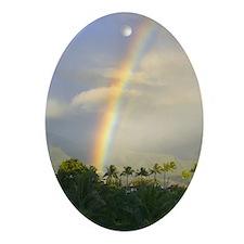 Rainbow on Kauai Oval Ornament