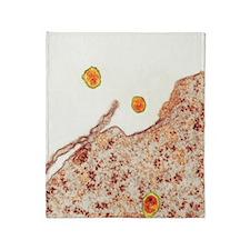 Hepatitis C viruses, TEM Throw Blanket