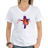 Anatomical heart Womens V-Neck T-shirts