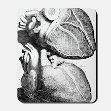 Heart anatomy, 18th century Mousepad