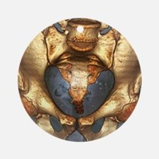 Healthy pelvis, 3D CT scan Round Ornament
