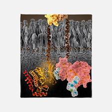 Growth hormone receptor, molecular m Throw Blanket
