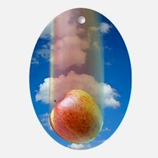 Gravity, conceptual image Oval Ornament