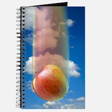 Gravity, conceptual image Journal