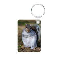 Grey squirrel sitting on t Keychains
