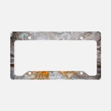 Grand Prismatic thermal sprin License Plate Holder