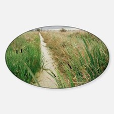 Drainage channel Sticker (Oval)