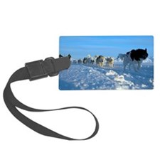Dogsledge, Northern Greenland Luggage Tag