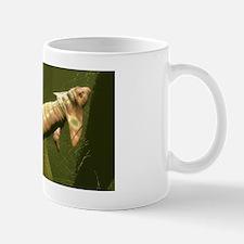 Diplocaulus prehistoric amphibian Mug