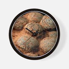 Dinosaur eggs Wall Clock