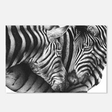 Zebras Oval Hitch Cover Postcards (Package of 8)