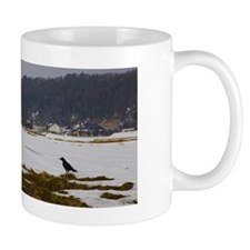 Rainbow, snow and bird Mug