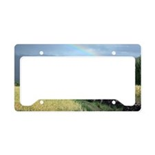 somewhere over the rainbow License Plate Holder