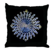 Diatoms, light micrograph Throw Pillow