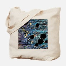 Garnets in micaschist, light micrograph Tote Bag